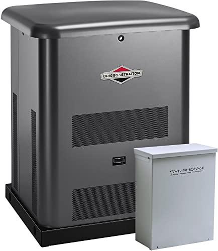 Champion 100294 Home Generator