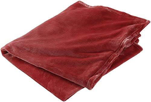 Lewis N. Clark Microplush Travel Blanket